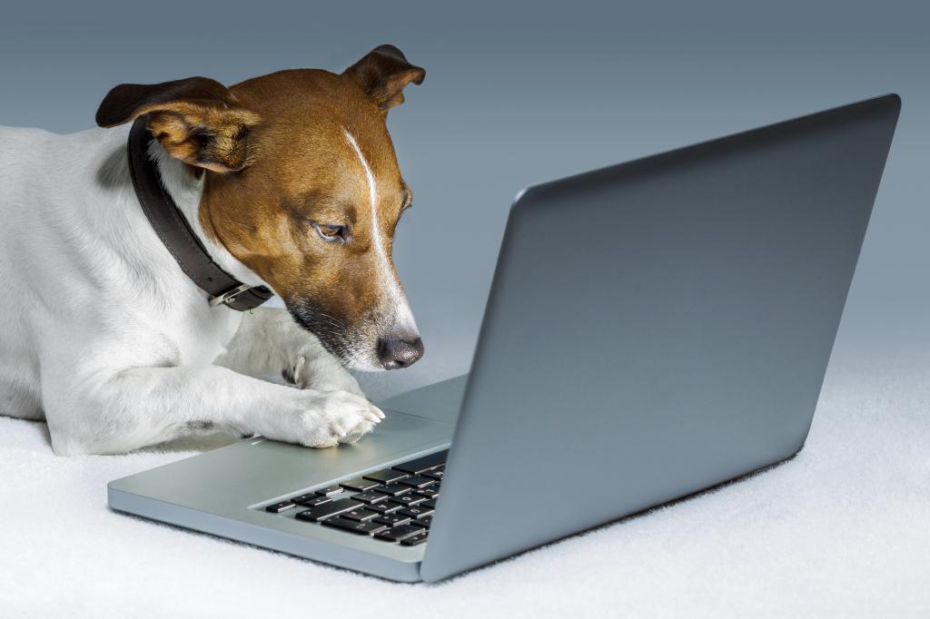 請求書発行システムで請求書の電子発行をしたら感じた3つのメリット!